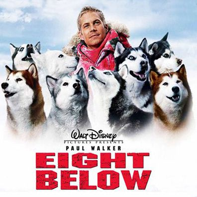 8 Below Famous Dog In Movie Eight