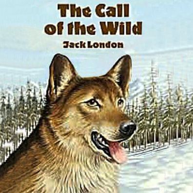 the impact of differing environments on bucks character in the call of the wild a short adventure no Buck of jack london's the call of the wild - buck of the call of the wild the main character of the novel, the call of the wild, is a st bernard and scotch shepherd mix, named buck.